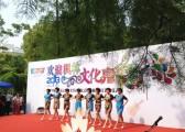 上海秋韵礼仪庆典公司枫林18