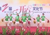 苏州秋韵林华第二届开心文化节6